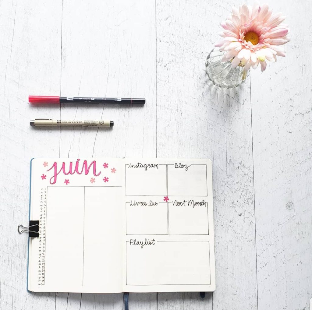 plan with me june monthly log