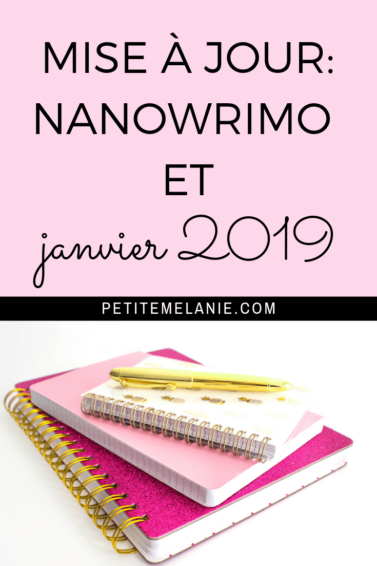 mise a jour bullet journal nanowrimo